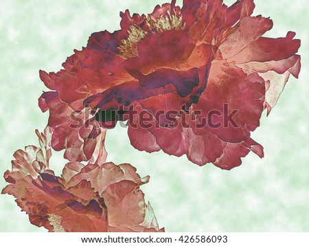 This is one of a series of stylized nature backgrounds created from an image of Peonies.                              - stock photo