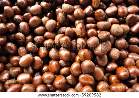 This is Sweet Chestnut in Thai food Market - stock photo