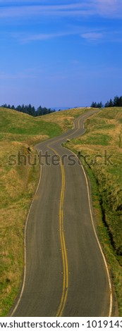 This is the Golden Gate National Recreation Area at Mount Tamalpais. There is a winding spring road with no cars on it. - stock photo