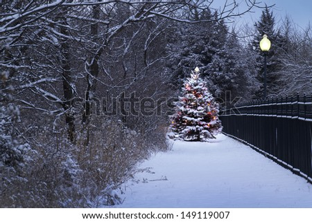 This Snow Covered Christmas Tree stands out brightly against the dark blue tones of this snow covered scene and wrought iron fence. - stock photo