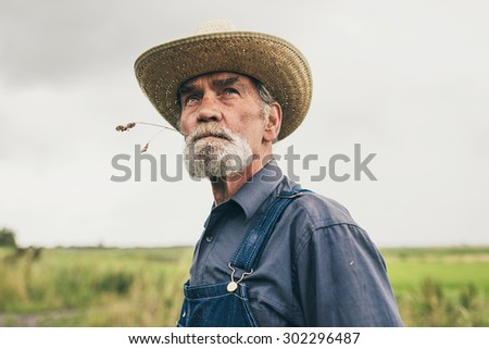 Thoughtful senior farmer chewing grass while staring into the distance, low angle head and shoulders view against a grey sky - stock photo
