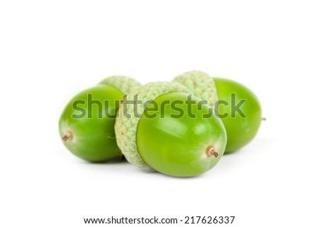 Three acorns on a white background  - stock photo