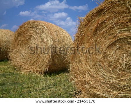 Three bails of hay on farmland - stock photo