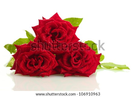 three beautiful red roses with drops isolated on white - stock photo