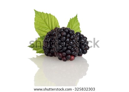three blackberries with leaves - stock photo