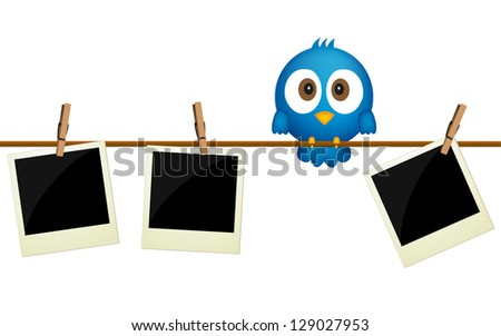 Three blank photos hanging on rope with blue bird sitting between them  . Raster version - stock photo