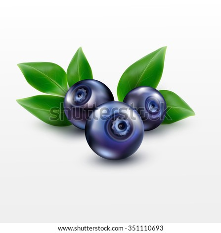 three blueberries with green leaves isolated on a white background - stock photo