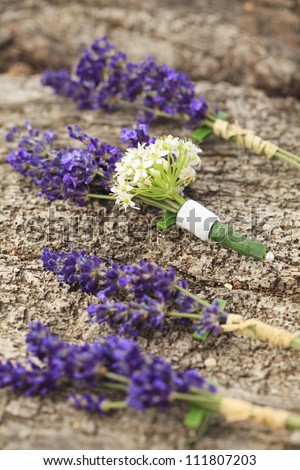 Three boutonniere made from purple lavender and white flowers for a groom and the groomsmen on a wedding day. (Shallow Focus) - stock photo