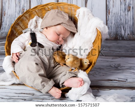 Three chicks and a cute sleeping little newborn baby in wicker basket. - stock photo
