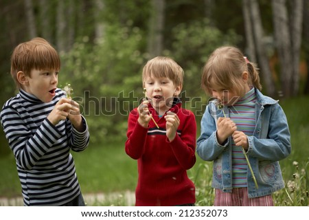 Three children are outdoors and blowing on dandelions/Children with dandelions - stock photo