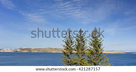 Three coniferous trees against blue sky and blue see with Malta island in the background - stock photo