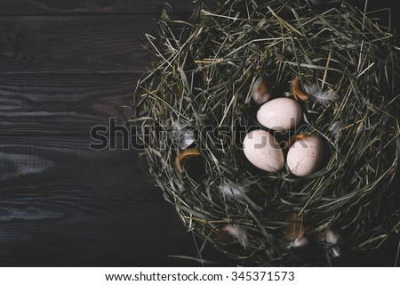 Three eggs in a nest of green grass on a black wooden background horizontal top view - stock photo