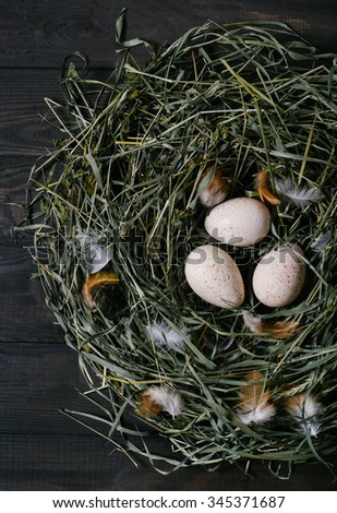 Three eggs in a nest of green grass on a black wooden background vertical top view - stock photo