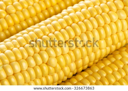 Three Fresh Ripe corn  background, diagonal composition. - stock photo