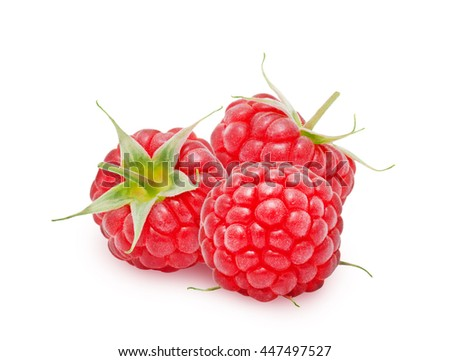 Three fresh ripe raspberry berries with stem isolated on white background. Design element for product label, catalog print, web use. - stock photo