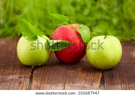 Three fresh wet apples with leaves on wooden board. Two green and one red. - stock photo