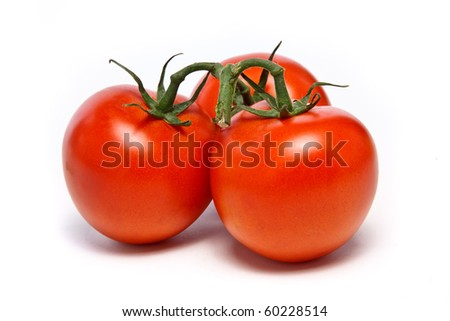 Three juicy vine ripened tomatoes still on the vine - stock photo