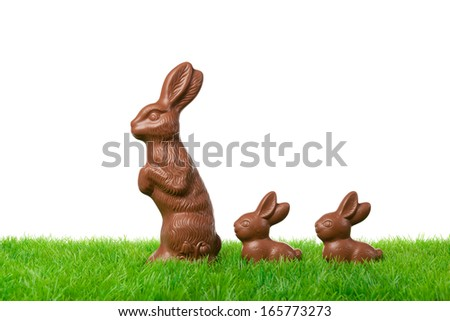 Three nice chocolate easter bunnies on a fresh meadow. Isolated on white. - stock photo