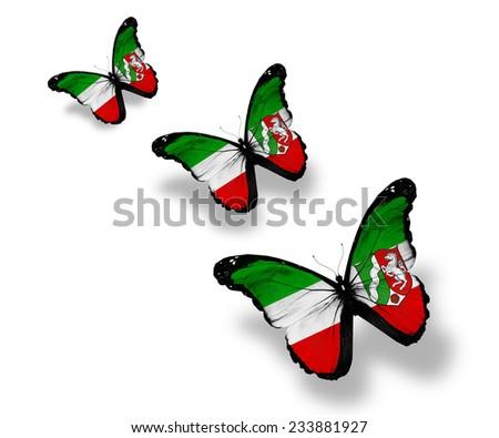 Three North Rhine-Westphalia  flag butterflies, isolated on white - stock photo