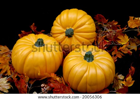 Three orange autumn pumpkins on a black background with some leaves. - stock photo
