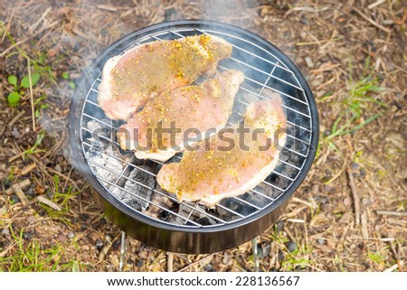 Three pieces of grilled meat - stock photo