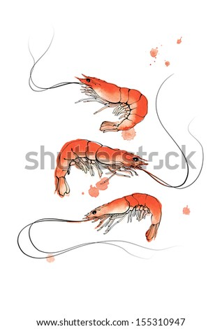 Three red watercolor shrimps on white background - stock photo
