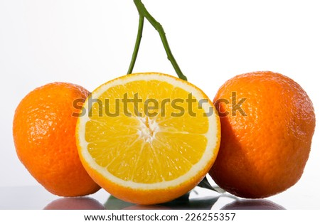 Three ripe and juicy oranges on a branch - stock photo