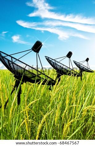 Three satellite dish antennas in field - stock photo