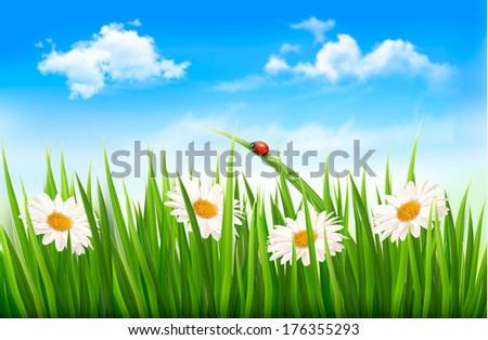 Three spring banners with blossoming tree brunch with spring flowers. Raster version - stock photo