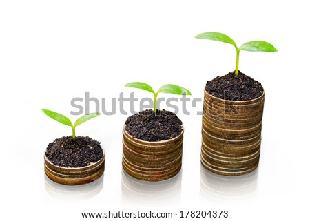 three trees growing on three piles of coins / csr / sustainable development / tree growing on stack of coins - stock photo