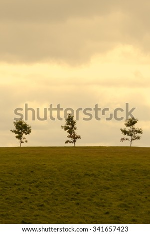 Three trees on the top of a hill with clouds in the sky. - stock photo