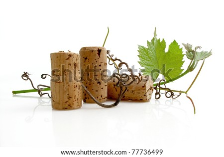 Three wine corks with grapevine leaves and tendrils on white - stock photo