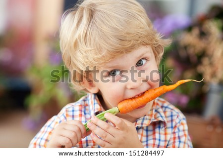 Three years old boy eating fresh carrot. - stock photo