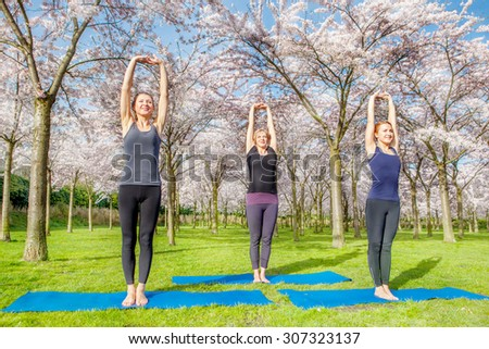 Three young women doing morning exercise in a spring blooming park - stock photo