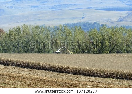 THRESHING MAIZE. Drakensberg foothills, Underberg, kwazulu Natal, South Africa. The maize, or corn is turned into silage and used and winter feed for dairy cattle. - stock photo