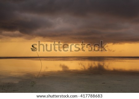 Thunder clouds at sunset over a beach and ocean, beautiful colors in background - stock photo