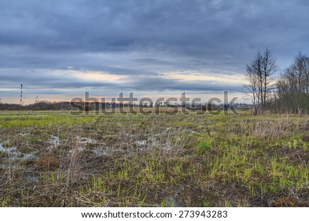 Thunderclouds on a sunset over a bog. A strong wind and a thunder-storm in the wood on a bog in the spring on a sunset. Dark dramatic rain clouds over countryside landscape. Spring in Russia. - stock photo