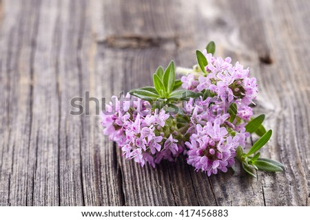 Thyme flowers on a wooden background - stock photo