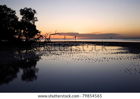 Tidal flat and mangrove trees at sunset in Florida - stock photo