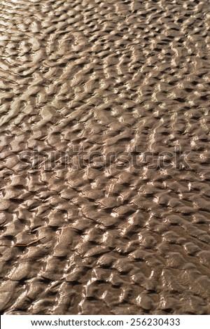 tidal pattern - stock photo