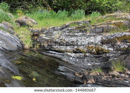 Tide Pool in Rock at Alaska Island Beach - stock photo