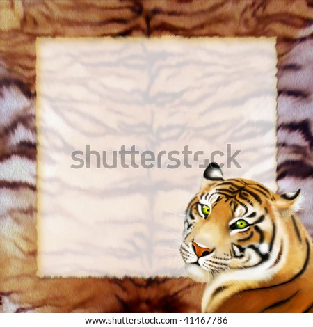 tiger and frame - stock photo