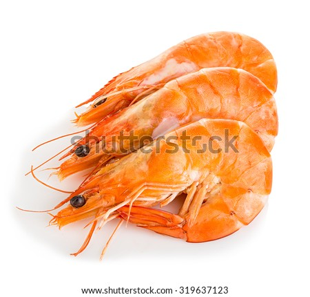 Tiger shrimps. Prawns with isolated on a white background. Seafood - stock photo