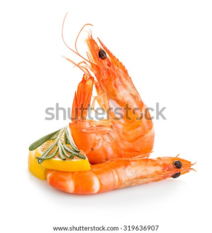 Tiger shrimps with lemon slice and rosemary. Prawns with lemon slice and rosemary isolated on a white background. Seafood - stock photo