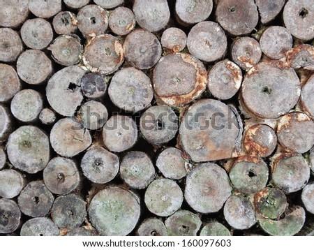 Tiles of Wood - stock photo