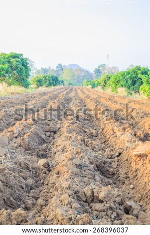 Tillage cultivation - stock photo