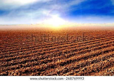 Tilled soil after harvest and preparing the land for cultivating. - stock photo