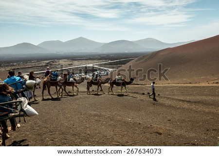TIMANFAYA - MARCH 31: Tourists taking a camel ride on March 31, 2015 in Timanfaya National Park, Lanzarote island, Spain. The parkland is entirely made up of volcanic soil. - stock photo