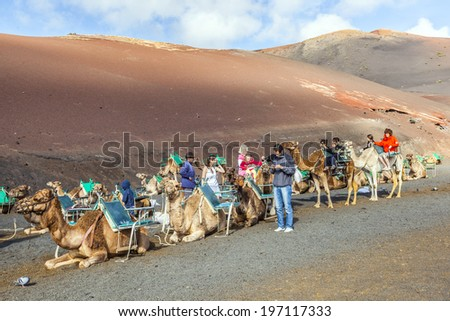 TIMANFAYA NATIONAL PARK, LANZAROTE, SPAIN - DECEMBER 26, 2010: Tourists riding on camels being guided by local people through the famous Timanfaya National Park in Lanzarote, Spain - stock photo