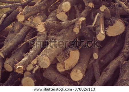 timber cutting. for the forestry and timber industry. vintage - stock photo